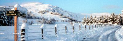 Alvie Estate Winter