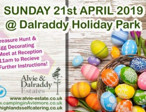 Easter Sunday – 21st April – Treasure Hunt & Egg Decorating – 11am Start